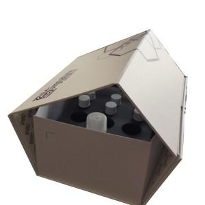 PG21 - Vaccine Paper Box