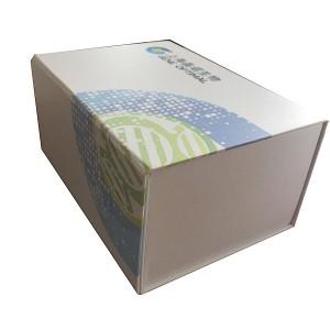 PG22 - Vaccine Paper Box